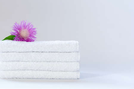 Four white neatly folded terry towels with a pink cornflower flower on a light background