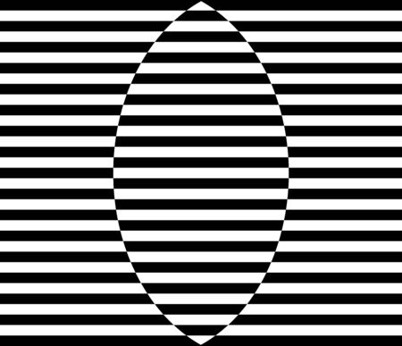 Black and White stripes petal pattern on rectangle, optical illustration vector design