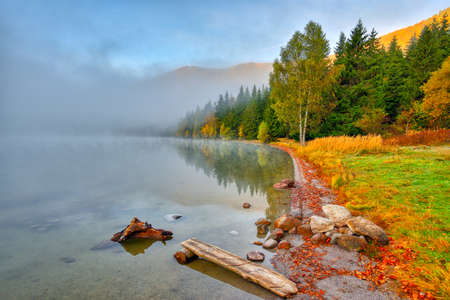 Autumn landscape in the mountains with trees reflecting in the water at St. Anas lake, Romania
