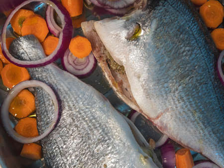 Gilthead bream (Sparus aurata) fish prepared to be put in the oven