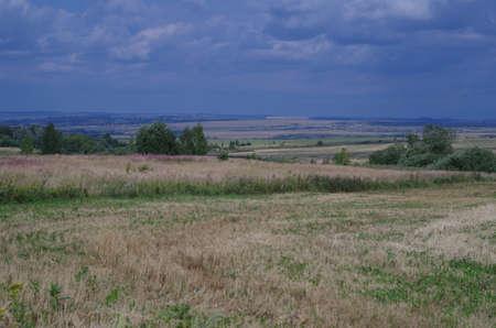 far: Rural landscape field with  stubble, far horizon