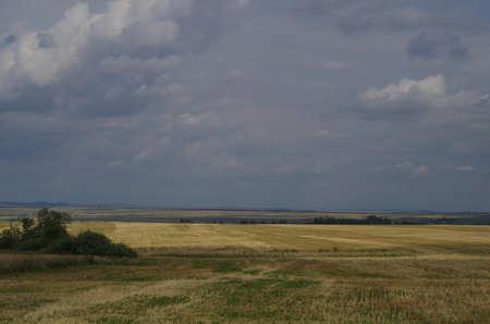 lejos: Campo Paisaje rural con rastrojo, horizonte lejano Foto de archivo