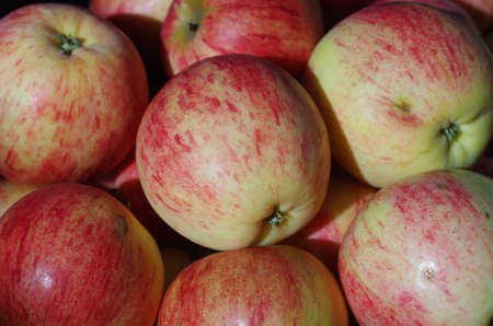 cuntry: Close up of red apples