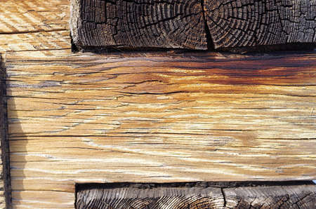Close up of old pine log with yellow gummy surface Stock Photo