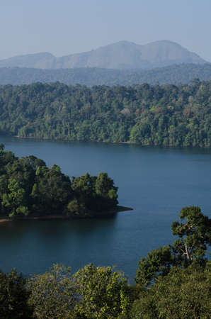after the dam is full water .then the forest is not close area. bring island in the dam Banco de Imagens
