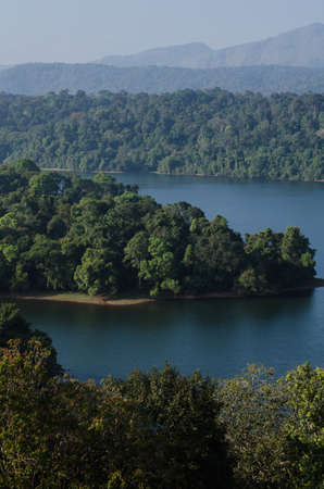after the dam is full water .then the forest is not close area. bring island in the dam Standard-Bild