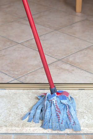 doing chores: Cleaning mop