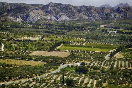 opens fields and crops in Provence