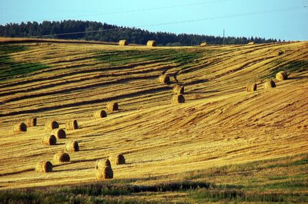 Straw bales on field and hill Stock Photo - 5321310