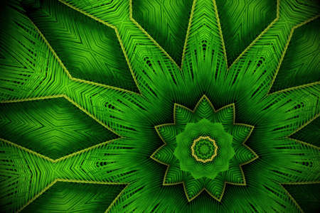 Abstract greenery background, palm leaves with kaleidoscope effect. Imagens