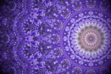 Violet wild flowers with kaleidoscope effect, abstract color Ultra Violet background.