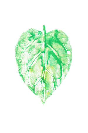 Watercolor leaf printed, heart shaped green leaf on white background for nature conservation concept. Clipping path included. Stock Photo