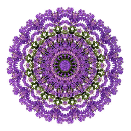 Abstract ultra violet background, Bougainvillea tropical flowers with kaleidoscope effect, mandala floral pattern on white background. Reklamní fotografie