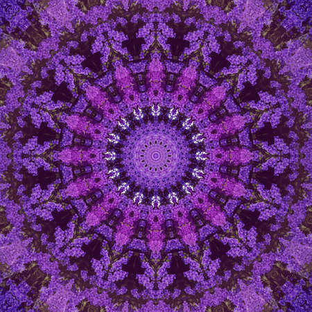 Abstract ultra violet background, Bougainvillea tropical flowers with kaleidoscope effect, mandala floral pattern.