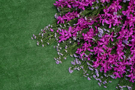 Pile of pink violet orchids tropical flower and purple Aster flower bunch on artificial grass green turf background.