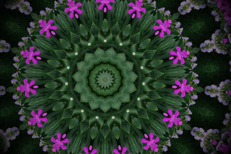 Abstract green violet background mandala floral pattern of palm monstera leaves and orchid flowers with kaleidoscope effect.