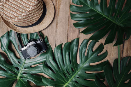 Flat lay creative frame of tropical nature leaves Monstera on rustic wood grunge background with retro camera and hat, tropical jungle vacation and travel concepts. 스톡 콘텐츠