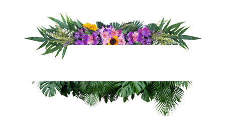 Tropical leaves foliage plant bush with colorful flowers floral arrangement nature frame banner on white background.