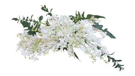 Tropical plants flower bush wedding decoration, bunch  white Dendrobium orchid flower  green leaves philodendron and foliage Ruscus floral arrangment  on white   .