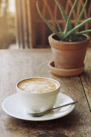 Morning coffee cup latte hot drink on rustic wood table background with small potted cactus succulent plant Aloe vera. Banque d'images