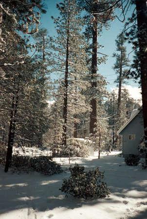 Beautiful Mountain Winter Retreat  Фото со стока