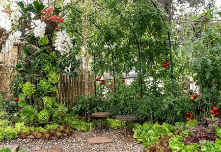 The decoration of a vegetable garden to be a corner to relax.