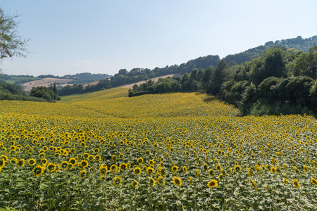 travel in the middle of italy spring time