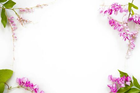 Frame of pink flowers with green leaf isolated on white background.