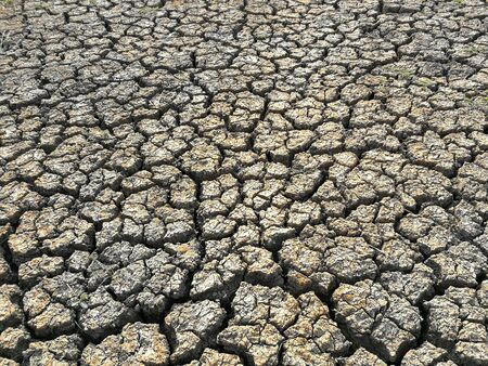 The dry and cracked land in the summer of northeastern Thailand.