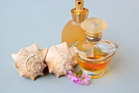 The Fashion Modeling Perfumes with flowers and shells photo