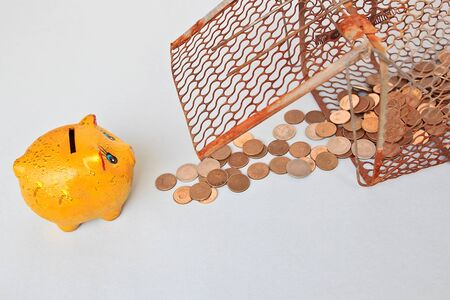 bucket of money: A Pile of Coins in Mousetrap to fascinate the Pig Money bucket