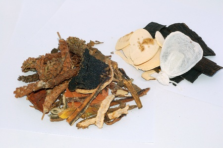 A variety of Traditional Chinesel medicines