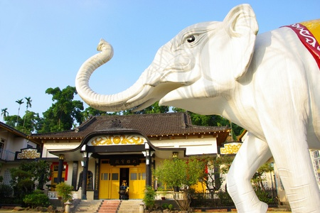 The Landscape of Buddhist temple with the white elephant Stock Photo