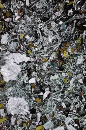 The Abstract Graph with Glass fragments and leaves