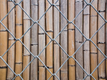 A dual obstacle with Barbed wire and bamboo fence photo