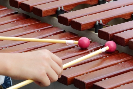 Xylophone playing