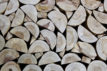 Irregular arrangement of woods with Growth rings