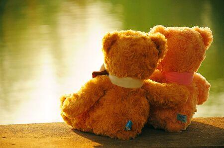 Two bears sweet near the lagoon