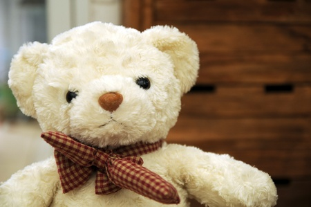 naivete: white teddy bear with Bow tie