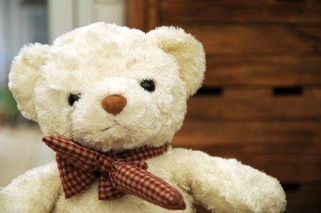 white teddy bear with Bow tie Stock Photo - 16677877