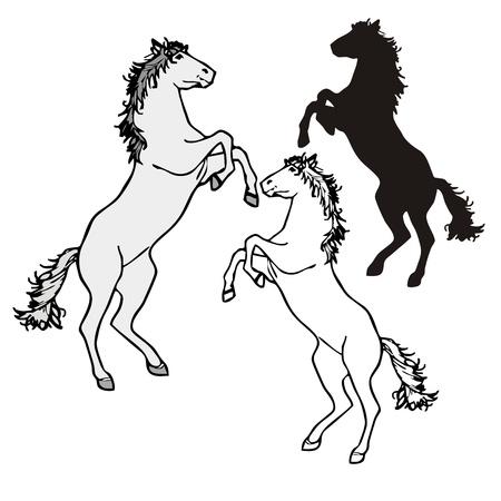 horse standing Stock Vector - 19904405
