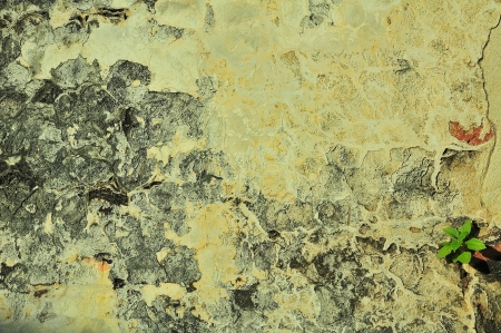 lurid: ancient wall Surface  Stock Photo