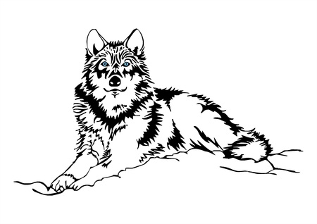masticate: Local despot of wolf tattoo vector