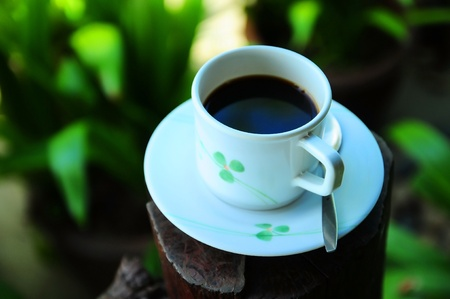 lightsome: black coffee in white cup with nature garden