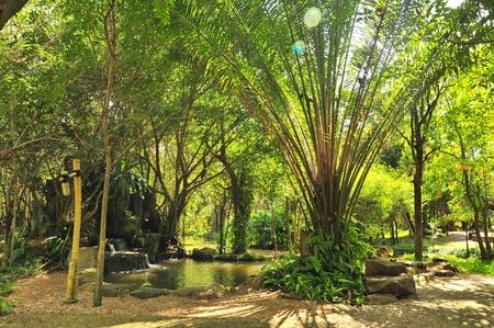 nature park  Stock Photo - 21644417