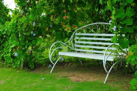 relax out door with bench in park Stock Photo - 21644416