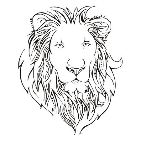 állat fej: Oroszlánfej sketch vector