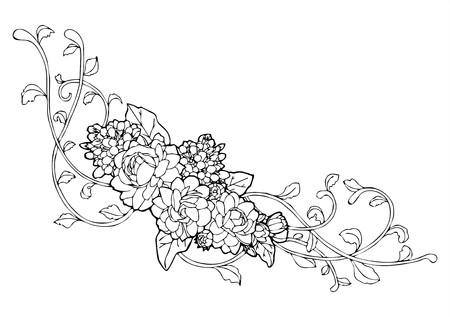 ジャスミンの花およびツルの線の描画
