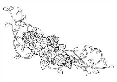 Jasmine flower and vine line drawing
