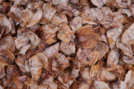 food preservation: a lot of preservation dried squid for selling in Thailand Sea food market texture background Stock Photo